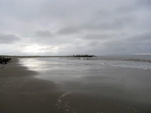 遠浅の野蒜海岸