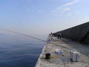 青物狙いの釣り人が並んでいる堤防
