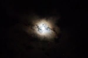 大平山リゾート高原の月2