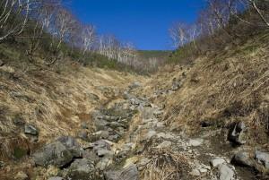 コマドリ沢からの登り
