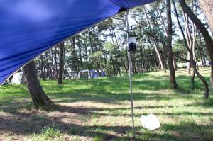 西浜キャンプ場の朝