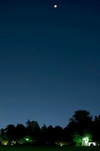 榴ヶ岡公園での月食