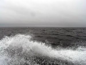 波しぶきを上げて走る船
