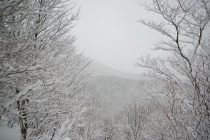 西側から見た泉ヶ岳