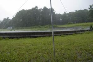 雨の吹上高原3