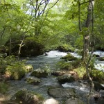 奥入瀬渓流2